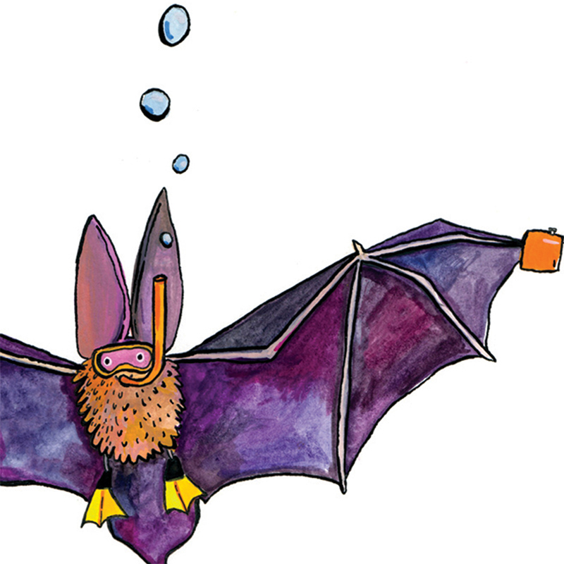 Aqua-Bats_Animal-lovers-will-love-this-bat-pun-greetings-card-_SM16_CU