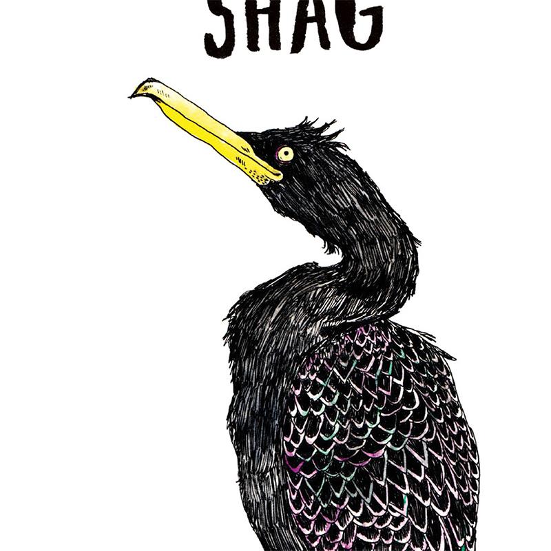 Shag_Rude-Pun-greetings-card-SM14_CU