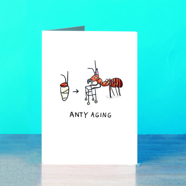 A blue background and a grey wooden table. On the table is a card. A baby ant wrapped in a blanket with a little smile, an arrow points from the baby ant to a very old ant with a moustache and a zimmerframe. He is wearing a purple party hat. Text below reads 'Anty Aging'.