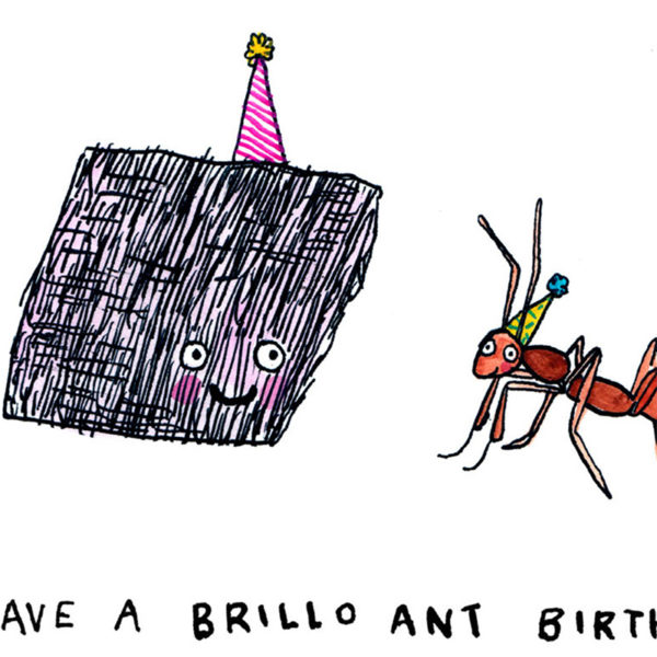 A brillo pad with a pink party hat is smiling at an ant woth a yello wparty hat. 'Text reads 'Have a brillo ant birth-'.