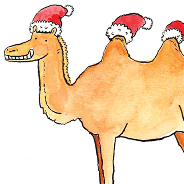 A camel is wearing a Santa hat on its head as well as a Santa hat on each of its humps.