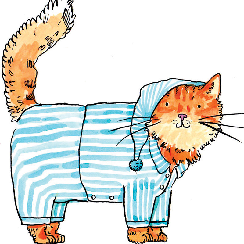 Cats-Pjs_Cute-cat-greetings-card-with-cats-pyjamas-pun.-Cards-for-cat-owners-and-cat-lovers_IT03_CU