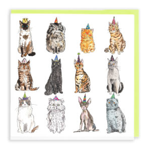 Card with pale green envelope. A card filled with twelve different breed of cat, all are wearing party hats of a different colour.
