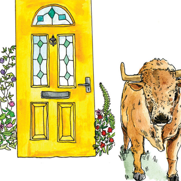 A brown bull is stood to the right of a bright yellow front door with green stain glass windows and flowers at each side of the door.