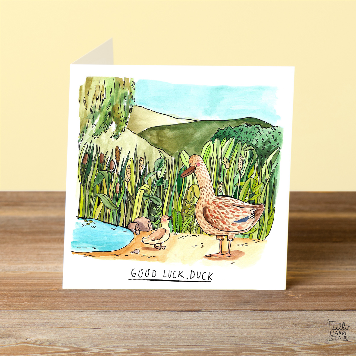 Good-Luck-Duck_-Good-Luck-greetings-card-with-British-humour-and-duck-pun_FW05_OT