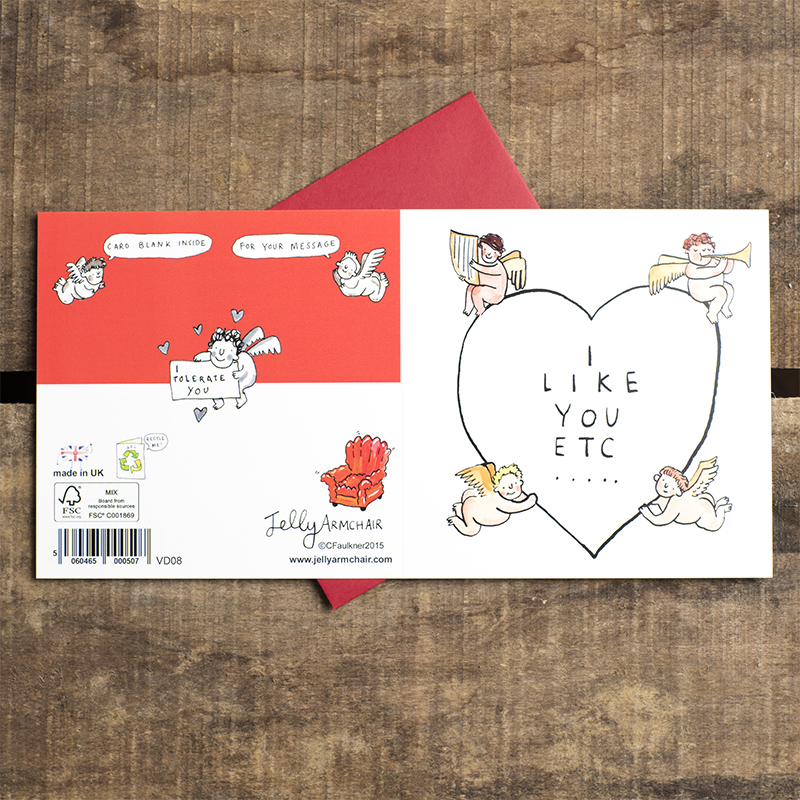 I-Like-You-ETC_-Jokey-Valentines-day-or-anniversary-greetings-card-for-simple-romantic-gestures_VD08_FLO
