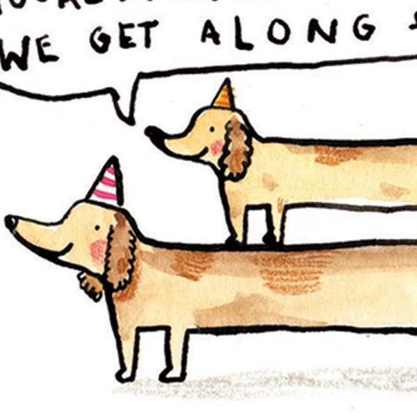 A close up of two long sausage dogs both wearing colourful party hats smiling.