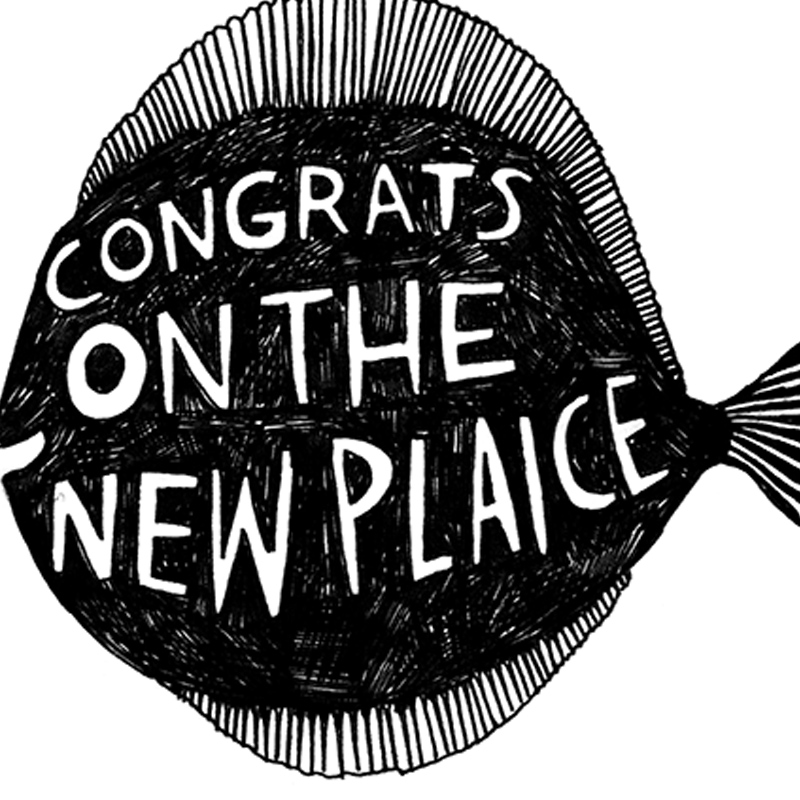New-Plaice_-Congratulations-on-the-new-home-greetings-card-with-fish-pun_BW29_CU