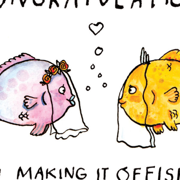 A close up of full image, text is cut off. Two lady fish, one pink and one yellow, both with veils.