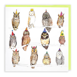 Card with pale green envelope. A card filled with twelve different types of owl, all are wearing colourful party hats.