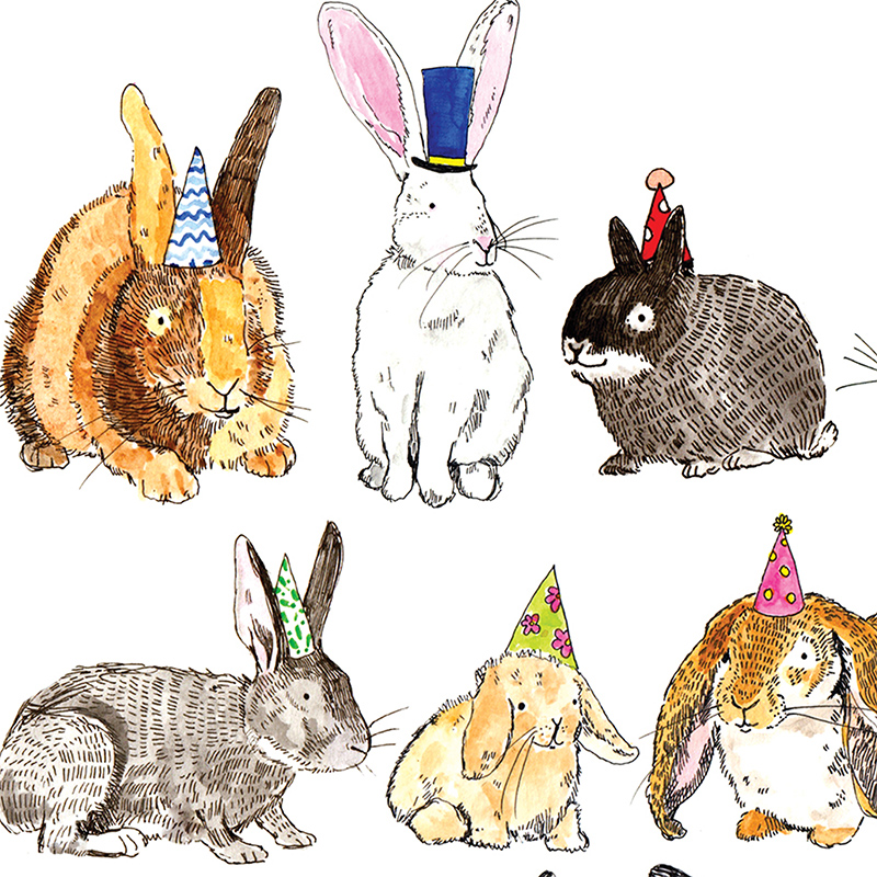 Rabbits_-Rabbit-illustration-greetings-card-for-rabbit-owners-and-nature-lovers_AP06_CU