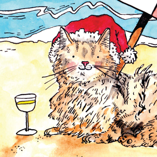 close up of a fluffy brown cat wearing a Santa hat relaxing on a beach with a glass of wine by its side.