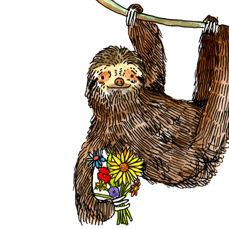 Sorry-Sloth_-Apology-greetings-card-for-nature-lovers_SO06_CU