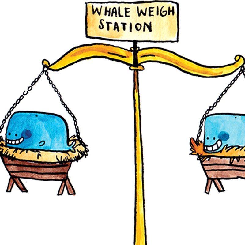Whale-In-A-Manger_-Funny-joke-Christmas-carol-card_CA08_CU