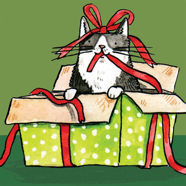 A close up of a black and white cat inside an open green spotted present. There is a red ribbon around the box and the cat is holing it in their mouth. The cat also has a red ribbon on its head.
