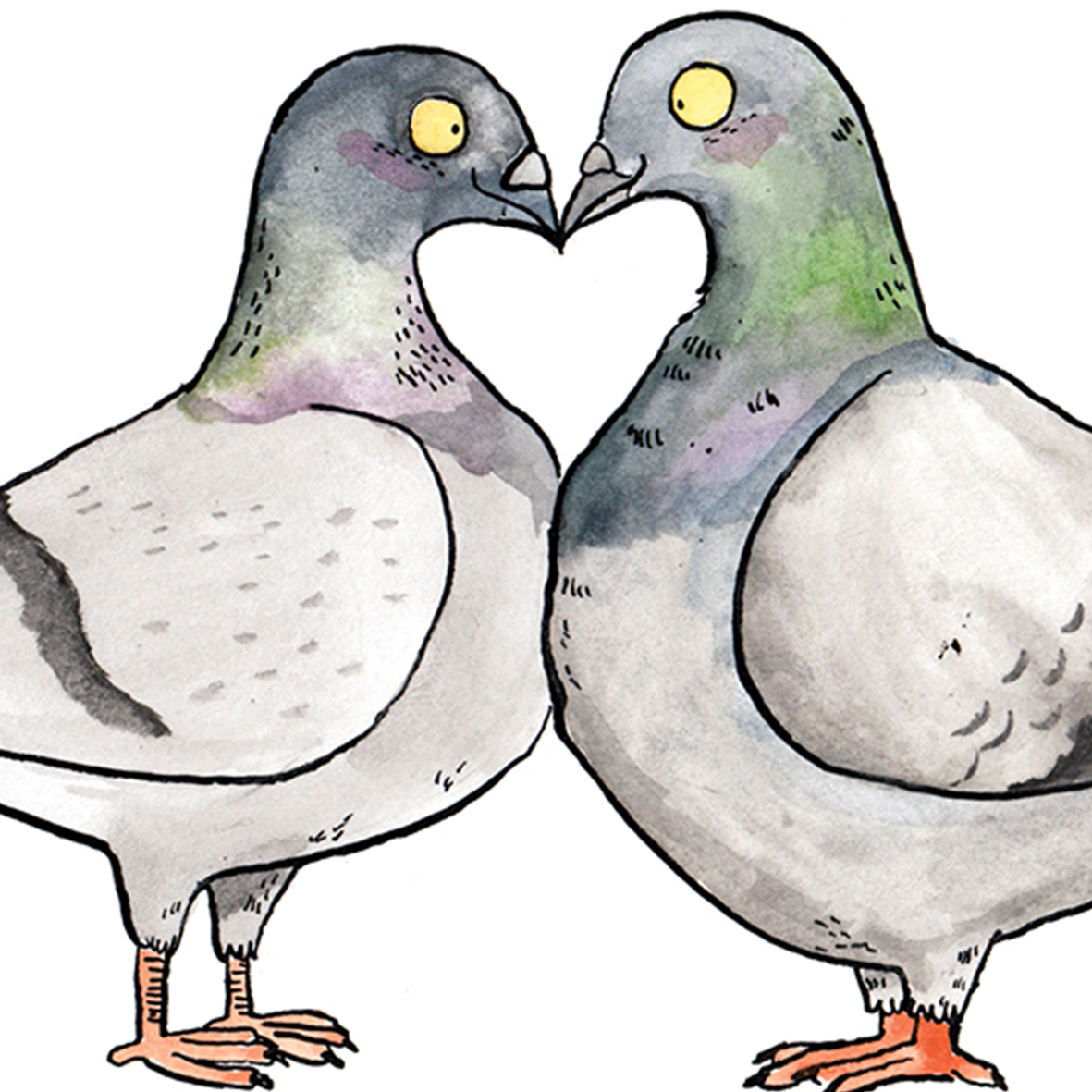Happy-Coople_Pigeon-themed-wedding-card-for-newly-wed-animal-lovers_WD04_CU