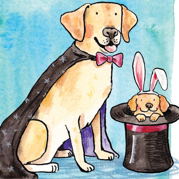 A close up of a golden Labrador dressed as a magician with a cape and bow tie. In the magicians hat is a puppy golden Labrador wearing rabbit ears poking its head out.