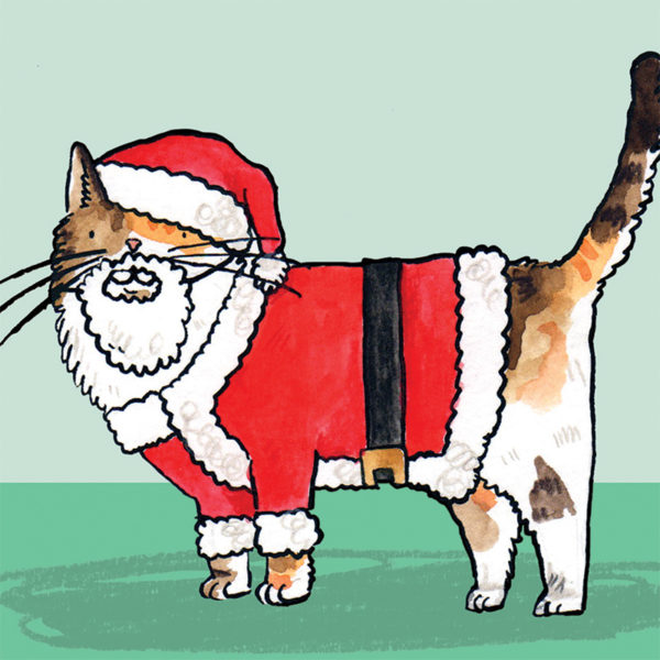 A close up of the cat stood wearing its Santa Claus outfit and white beard.