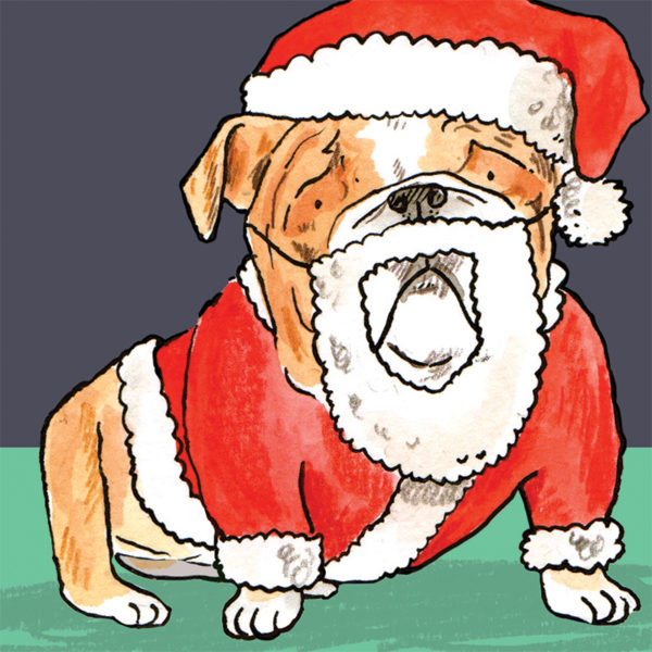A close up of the bull dog wearing his Santa Claus outfit and beard.