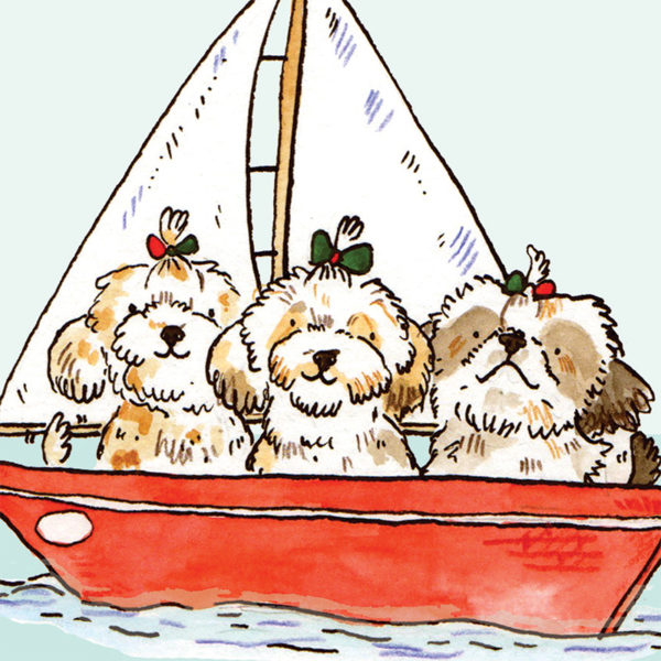 A close upon three shitzus in a red sail boat. They all have a green and red bow on their head holding their fur into a little pony tail.