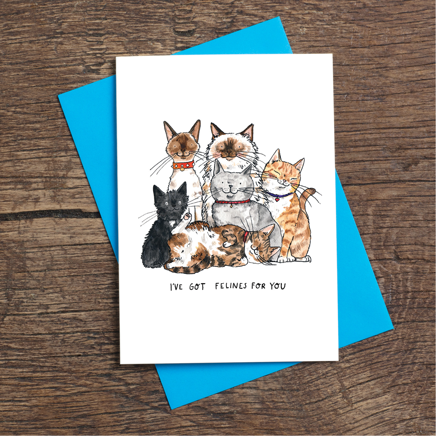 Felines-for-you_-Cat-greetings-card-for-anniversaries_SM72_FLC