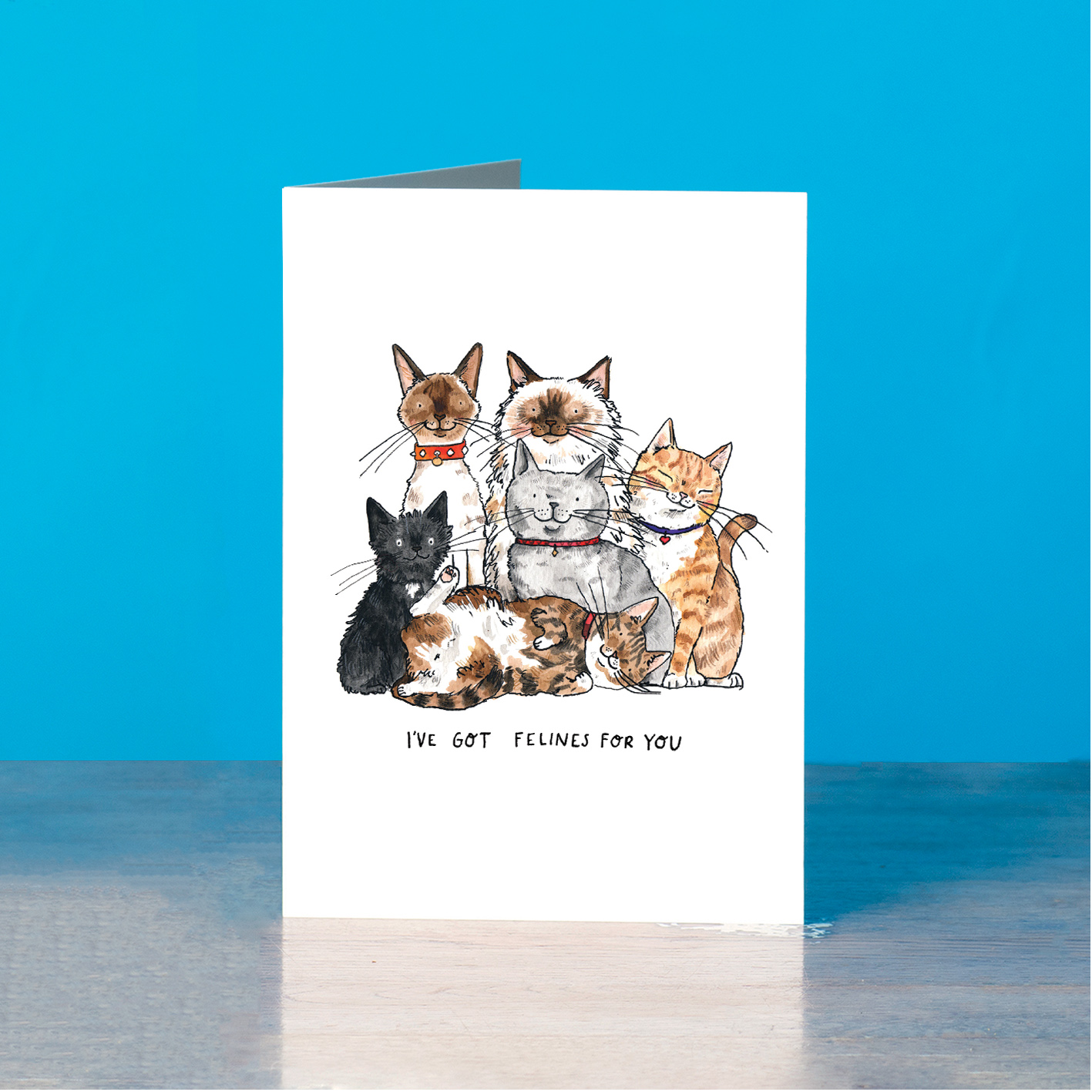 Felines-for-you_-Cat-greetings-card-for-anniversaries_SM72_OT