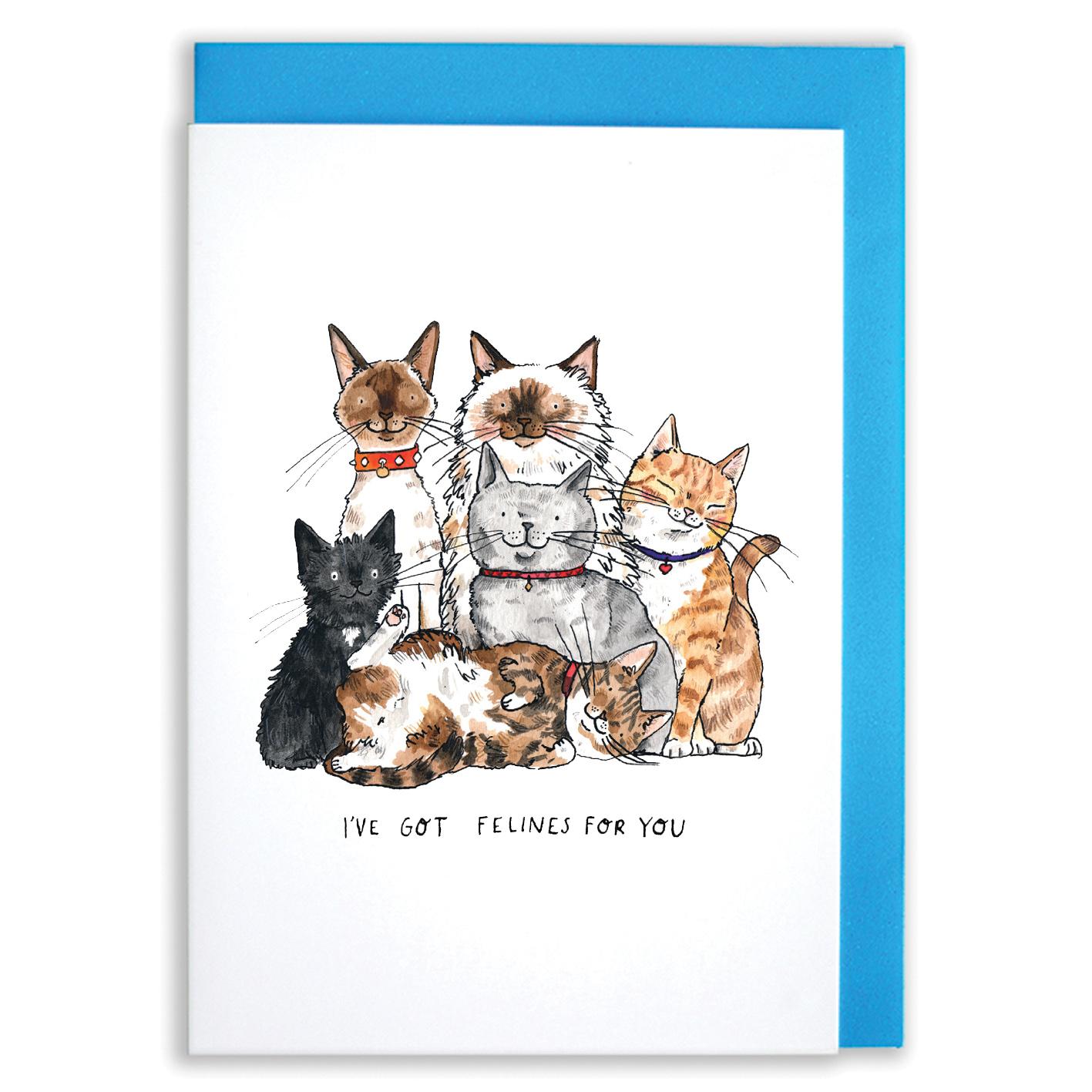 SM72-Felines-for-you-_0003s_0005_SM72-Feines-for-you