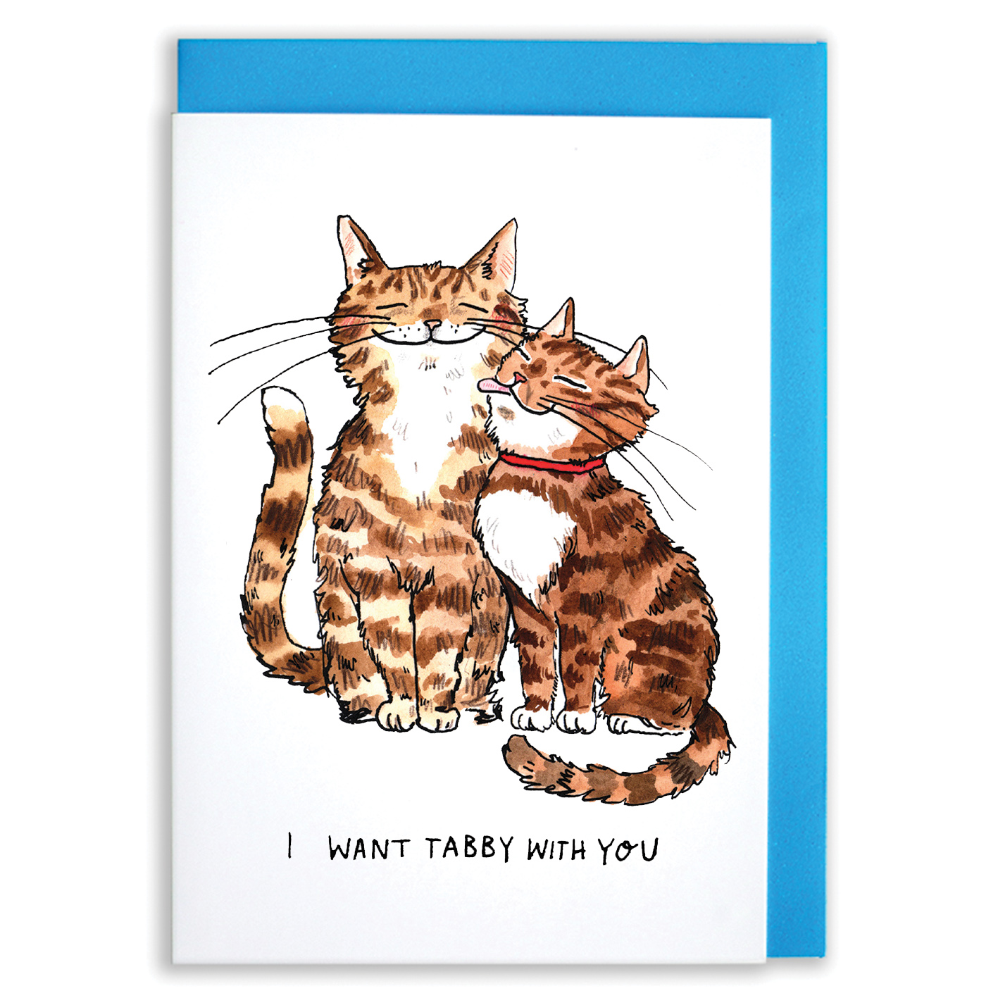 Want-Tabby-With-You_-Cat-pun-romantic-greetings-card_SM70_WB